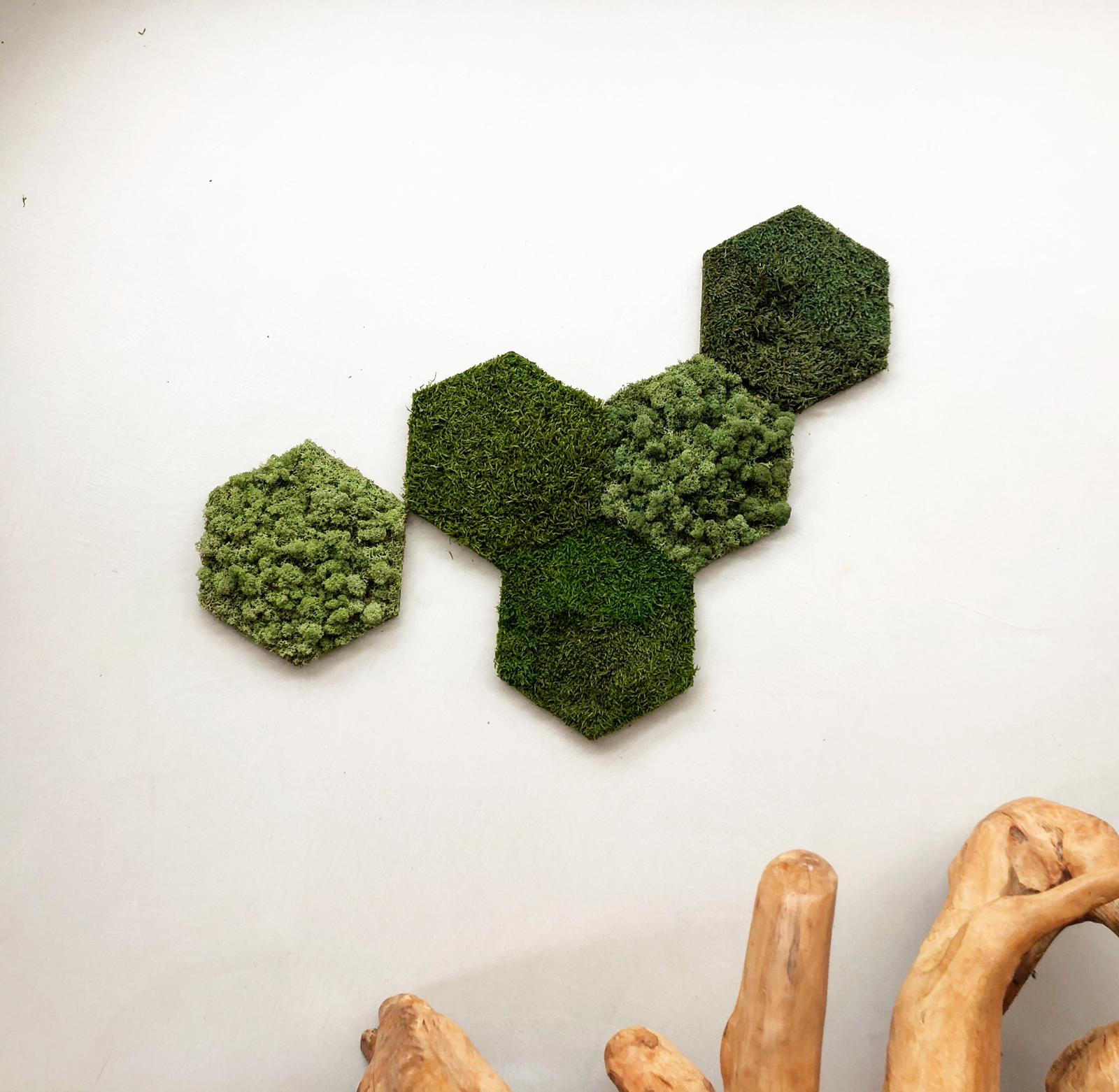 Mos hexagons